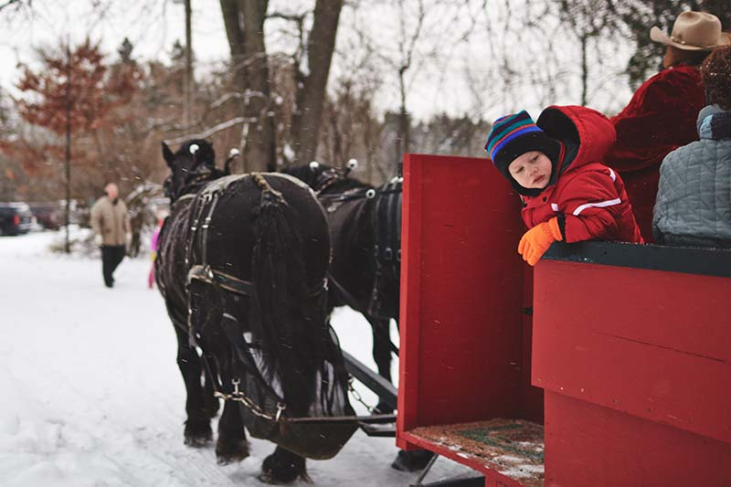 The Outing Lodge Sleigh Ride December 2013 Photo By Joe Lemke 019