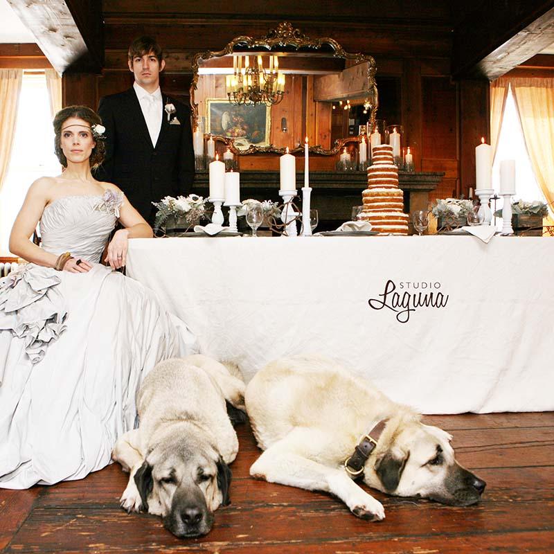 wedding photos (21)