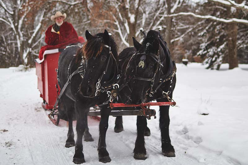 The Outing Lodge Sleigh Ride December 2013 Photo By Joe Lemke 021